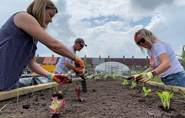 Grow Speke is blooming thanks to Quantil and the Steve Morgan Foundation