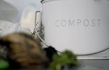 Claim your free bin and get composting with Grow Speke!